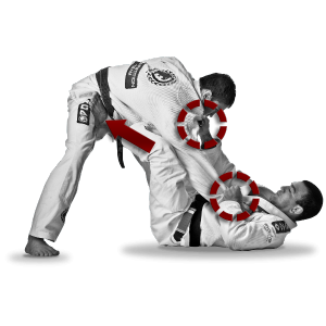 Curriculum Brazilian Jiu-Jitsu for Beginners