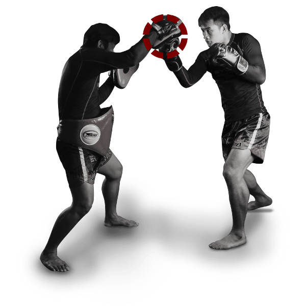 Tutorial Boxing