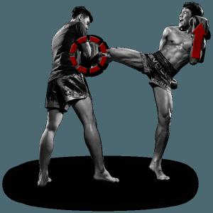 Curriculum Muay Thai for Beginners