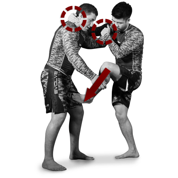 Tutorial Self-Defense