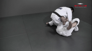 50/50 Guard Sweep