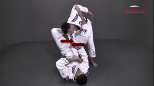 Arm Bar From Spider Guard