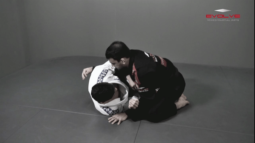 Arm Drag From Z Guard