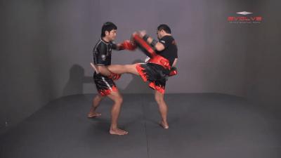 Attachai Fairtex: Catch, Punch, Low Kick