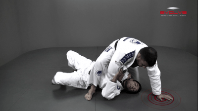 Attack From The Mount To Back Control