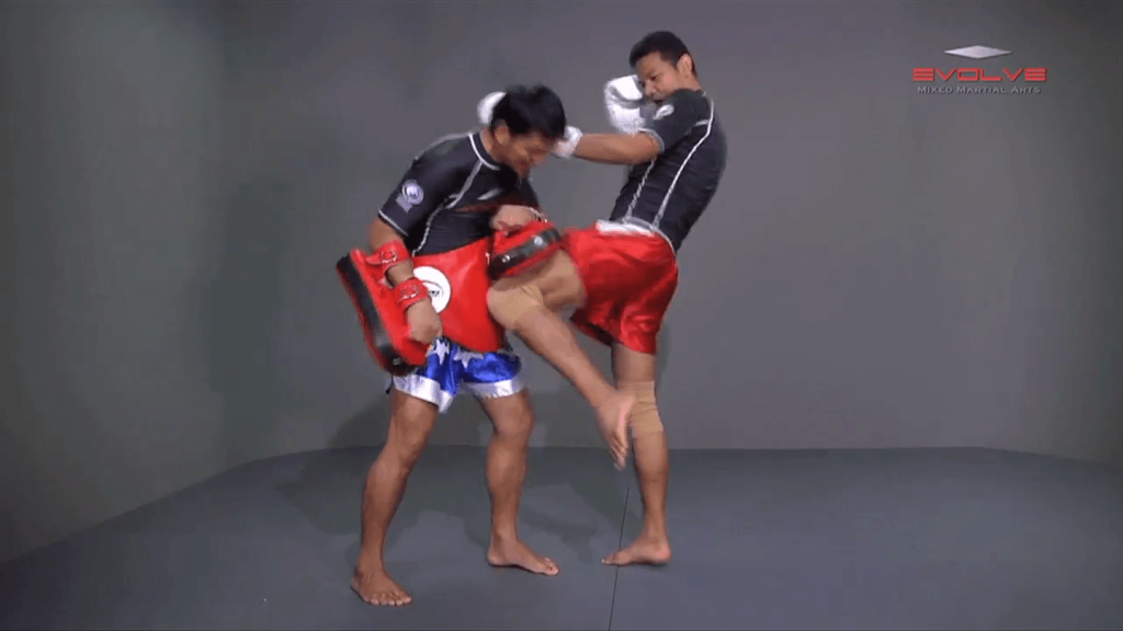 Basic Knee Strikes