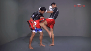 Basic Knee Strikes