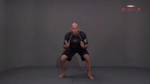 Basic Stance