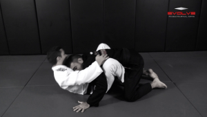 Butterfly Guard Pass