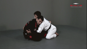 Butterfly Guard Sweep