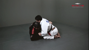 Butterfly Guard Sweep Combination
