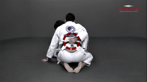 Butterfly Guard To X Guard Transition