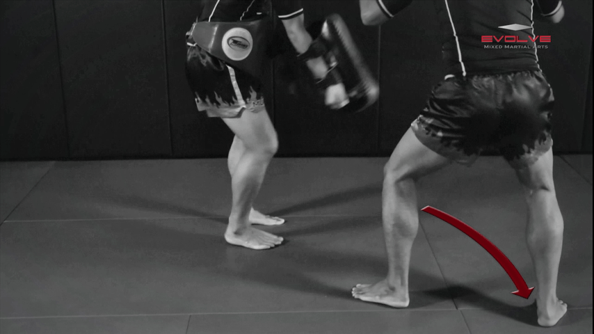 Chalee Sor Chaitamin: Counter to Left Kick, Left Hook, Turn, Right Low Kick