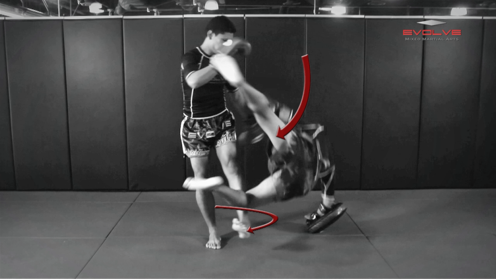 Chalee Sor Chaitamin: Footsweep To Counter Knee Strike