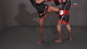 Chaowalith Jocky Gym: Kick, Hold Block