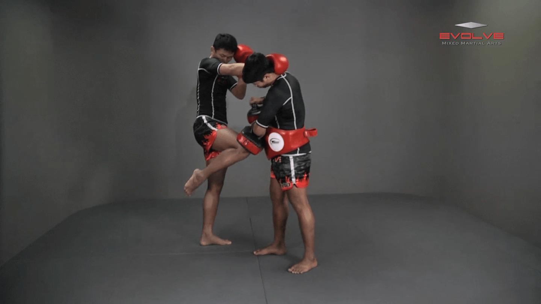 Chaowalith Jocky Gym: Push Kick x2, Fake, Turn, Knee