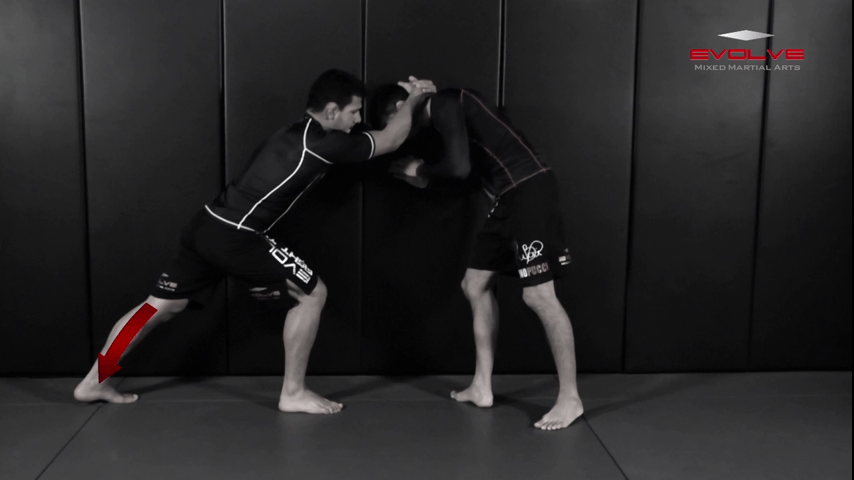 Clinch Defense Against The Cage