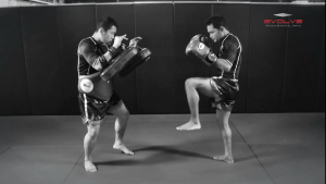Dejdamrong Sor Amnuaysirichoke: Fake, Turn Left, Right Low kick