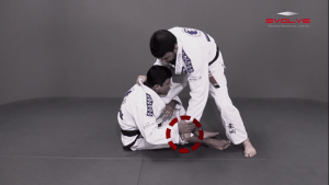 Guard Pass From Single Leg