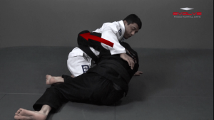 Half Guard Shin Sweep