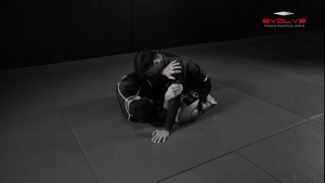 Half Guard Sweep