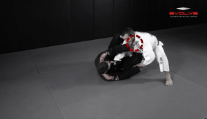 Half Spider Guard Sweep