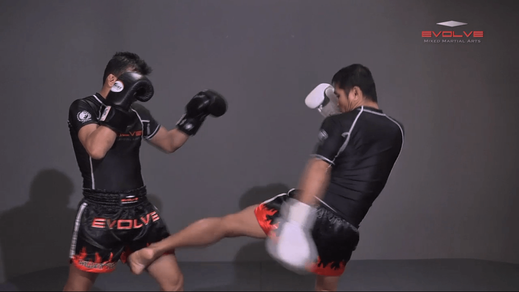 Inside Low Kick