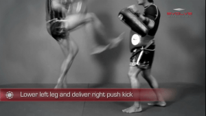 Jump Push Kick