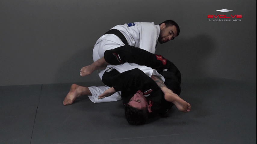 Knee Bar From Spider Guard