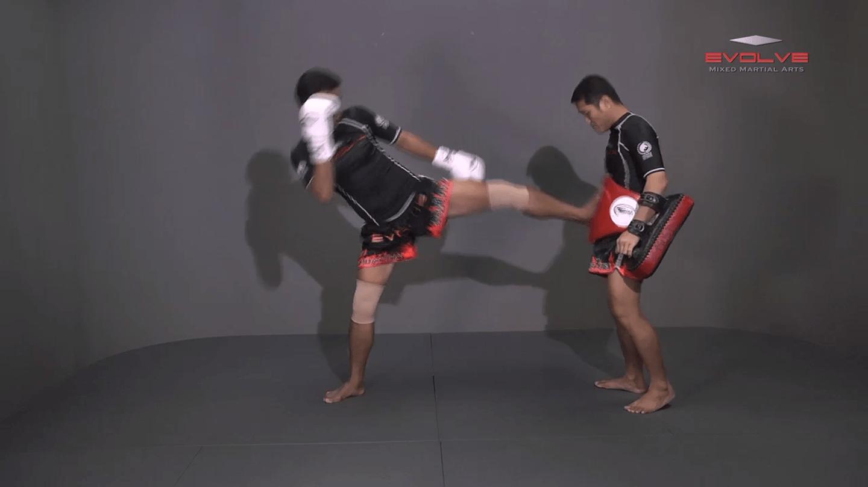 Lamnammoon Sor Sumalee: Jab, Push Kick, Jab, Slide Push Kick