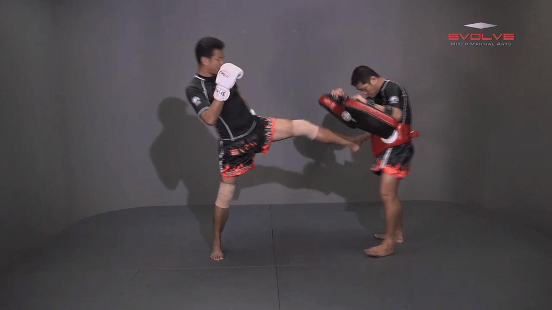 Lamnammoon Sor Sumalee: Left Push Kick, Fake, Right Knee