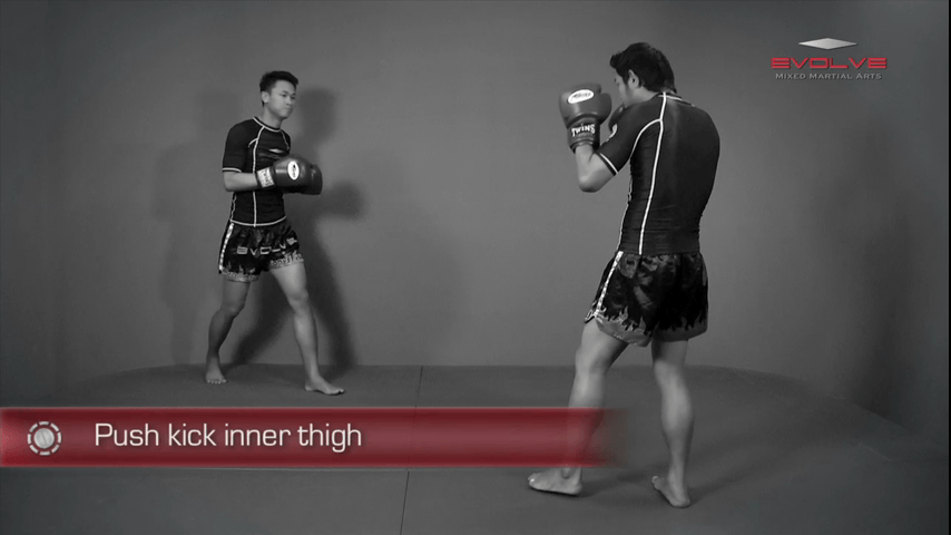 Lean Back Push Kick Thigh
