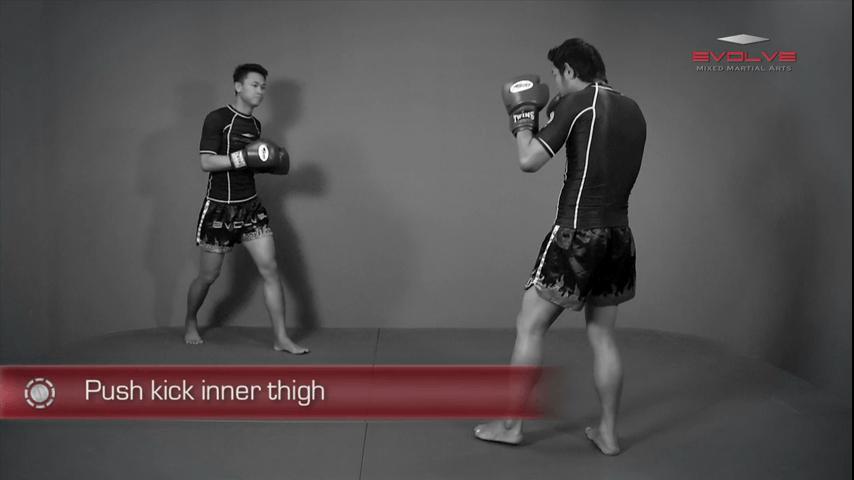 Lean Back Push Kick Thigh