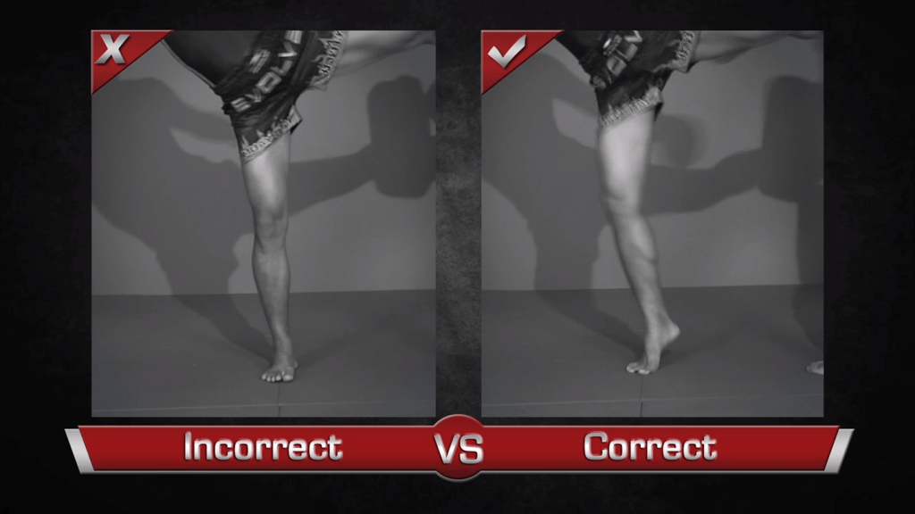 Left Switch Kick