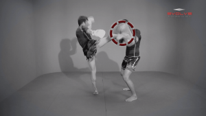 Muangfalek Kiatvichian: Left Hook, High Kick