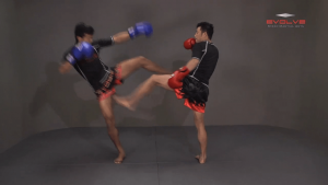 Muangfalek Kiatvichian: Left Low Kick, Left Push Kick