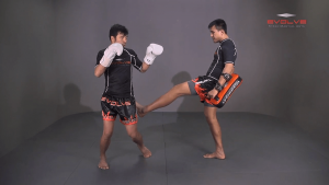 Muangfalek Kiatvichian: Twist Knee, Left Kick