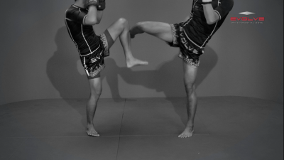 Namsaknoi Yudthagarngamtorn: Block To Push Kick