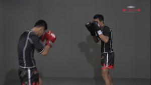 Namsaknoi Yudthagarngamtorn: Push Kick Defense (Leg Parry)