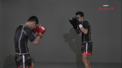 Namsaknoi Yudthagarngamtorn: Push Kick Defense (Leg Parry)