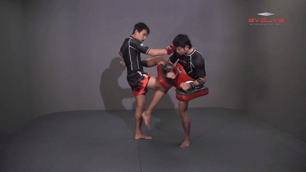 Namsaknoi Yudthagarngamtorn: Push Kick To High Push Kick