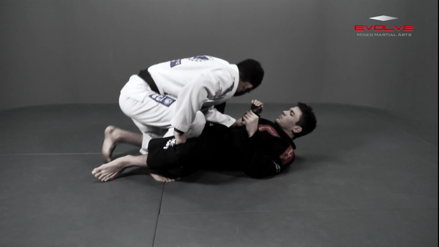 Open Guard Pass