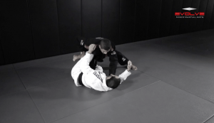 "Open ""Leque"" Guard Pass"