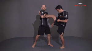 Outside Single Leg Counter To Kick Out
