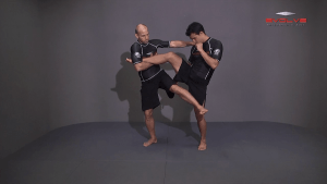 Outside Single Leg To Front Trip