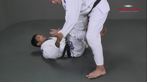 Passing The De La Riva Guard To Kimura Lock