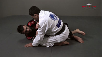 Pendulum Half Guard Sweep