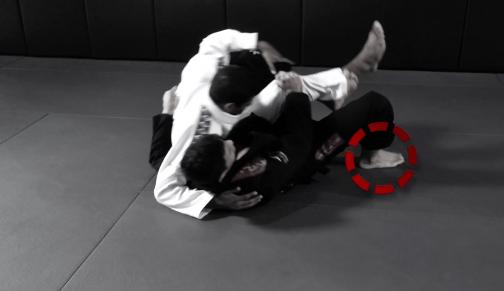 Reverse Half Guard Sweep