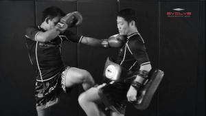 Saenghirun Lookbanyai: Cross Block, Right Knee X2, Left Hook To Body