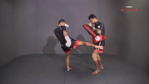 Saknarong Sityodtong: Cross Block, Low Kick